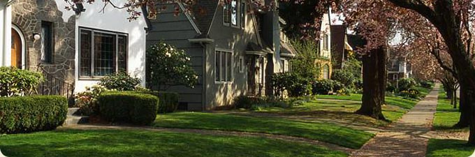 Residential professional lawn care services