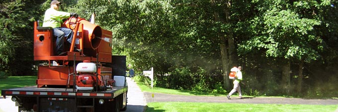 Residential mosquito control and tick control services
